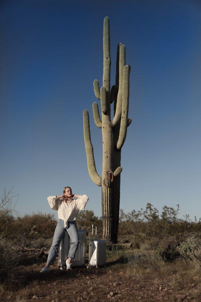 Hardware Koffer Aluminium silber Saguaro Kaktus cactus